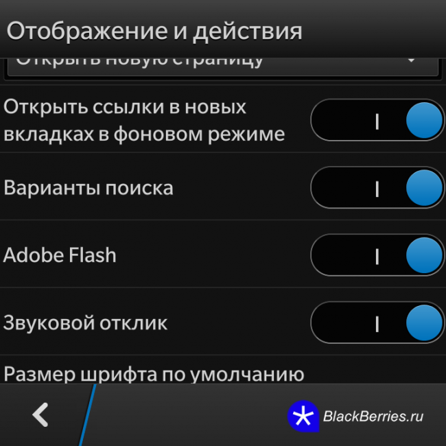 BBQ10-Browser-Flash-3