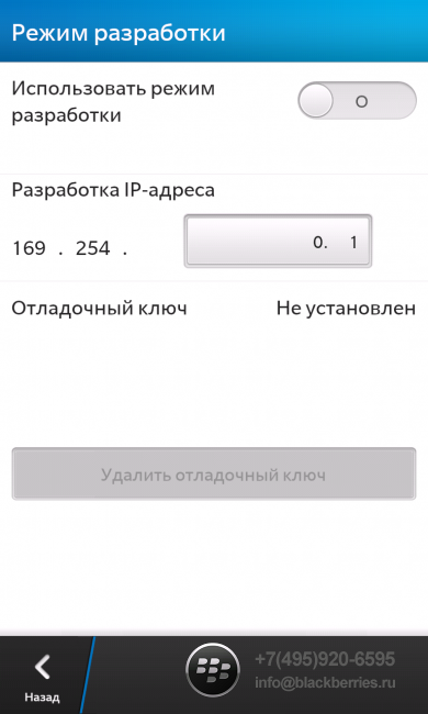 blackberry-z10-skype-3-390x650