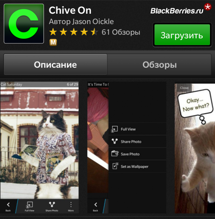 chive_on
