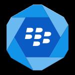 sluzhby-blackberry-hub
