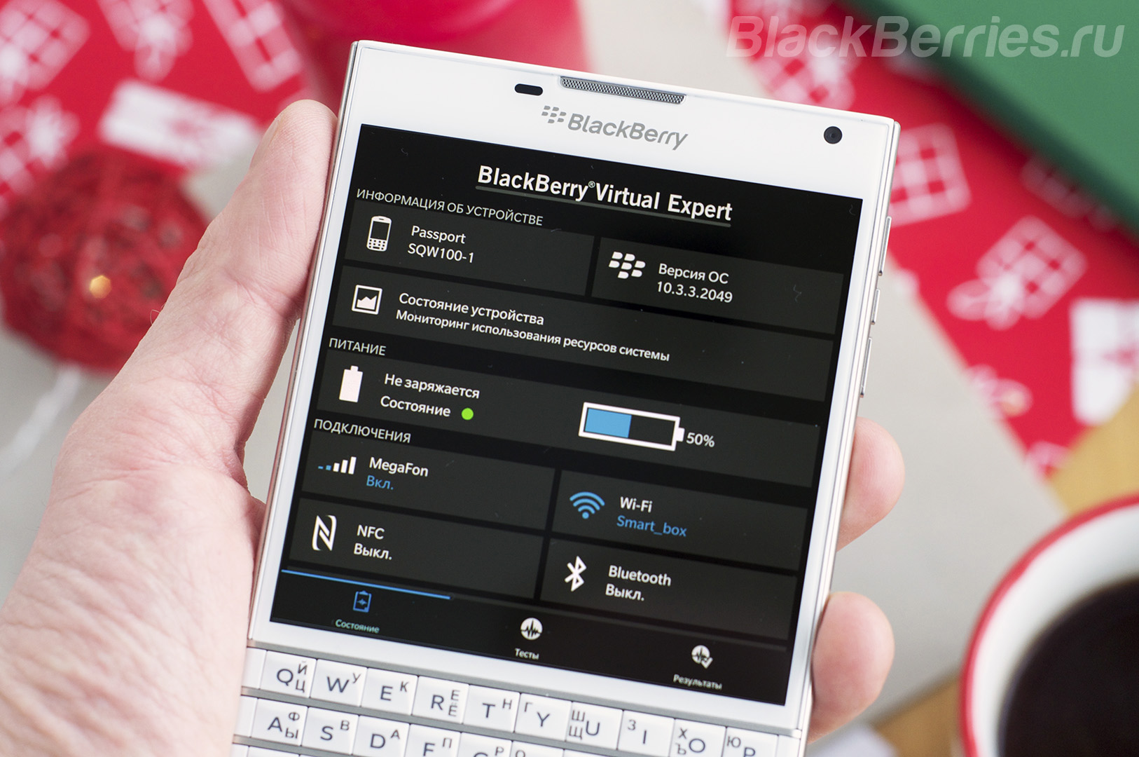 blackberry-1033-14