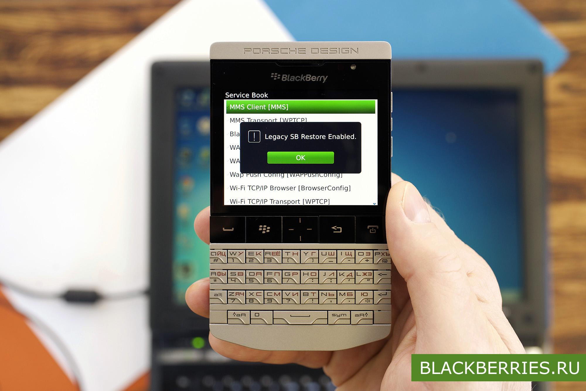 Blackberry Bis Service Book